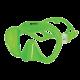 Mares Tauchmaske - Tropical Einglasmaske - Grün