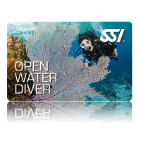 Open Water Diver (OWD) - Language Kurs