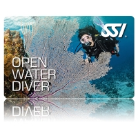 Open Water Diver (OWD) Weekend Kurs