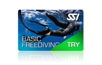 Try Freediving im Big Blue Berlin