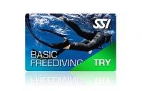 Try Freediving im Big Blue Berlin